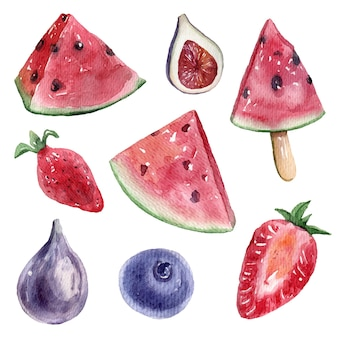 Obst- und beerenaquarell, vektorillustrationssatz