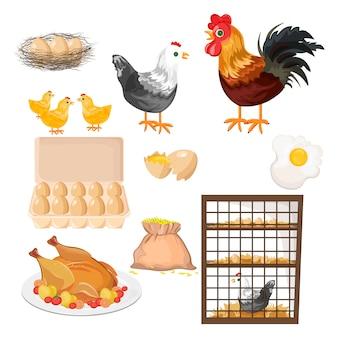 Öko-landwirtschaft mit hahn, huhn und eier muster