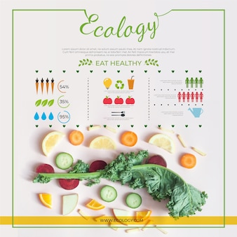 Ökologie infografik design