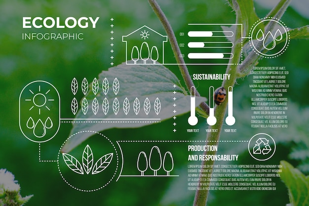 Ökologie-infografik mit fotovorlage