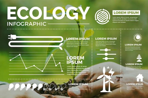 Ökologie-infografik mit verschiedenen abschnitten
