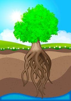 Ökologie modernes design, grüner baum, ökologische broschürenvorlage. vektor