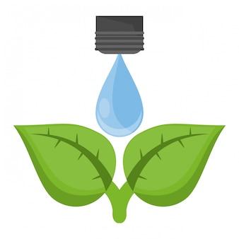 ökologie wassertropfen auf pflanze