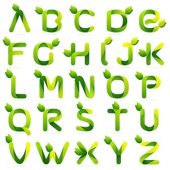 Ökologische englische alphabetbuchstaben mit blättern gesetzt.