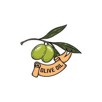 Ölzweig. olivenöl. elemente für etikett, zeichen, logo, poster. illustration