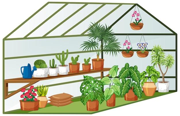 Offener blick auf das gewächshaus mit vielen pflanzen im inneren