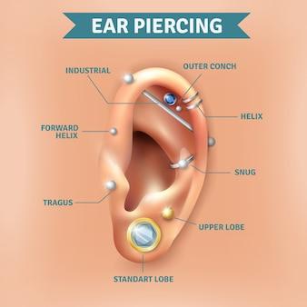 Ohr-piercing-arten positionieren hintergrund-plakat
