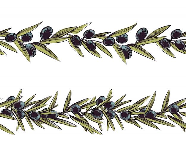 Olive grenze. griechenland verzweigt sich nahtloser rahmenolivenzweig
