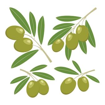 Oliven auf weiß