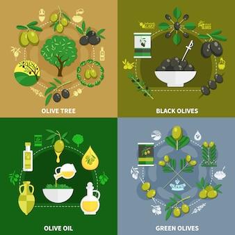 Oliven flaches design-konzept