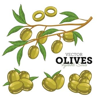 Oliven mit blättern,