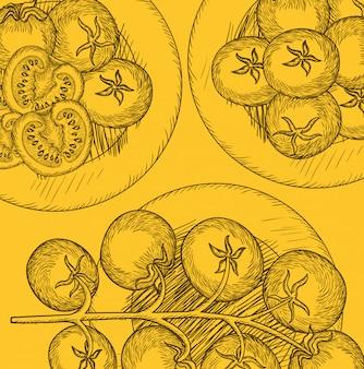 Oliven- und tomatenpflanze gezeichnetes italienisches lebensmittel