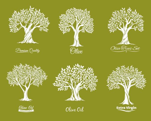 Olivenbäume bauernhofikonen eingestellt
