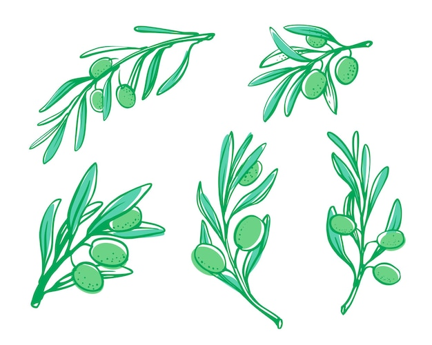 Olivenbaum-brunch-skizze.