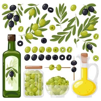 Olivenbaumzweige und olivenöl extra vergine