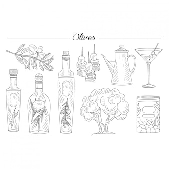 Olivenöl und zweig handgezeichneten set