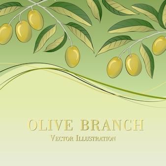 Olivenzweig auf grünem hintergrund
