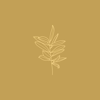 Olivenzweig mit blättern. botanische blätter in einem modernen minimalistischen stil umreißen. vektor-illustration. zum bedrucken von t-shirts, webdesign, schönheitssalons, postern, erstellen eines logos und anderen