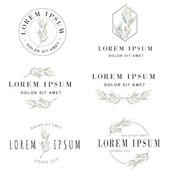 Olivgrüne blume logo-kollektion