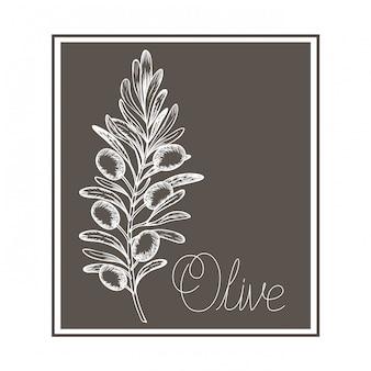 Olivgrüne blume zeichnung isoliert symbol