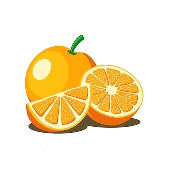 Orange fruchtvektorillustration. gut für frisches obstprodukt