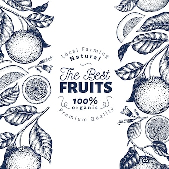 Orange früchte in blau