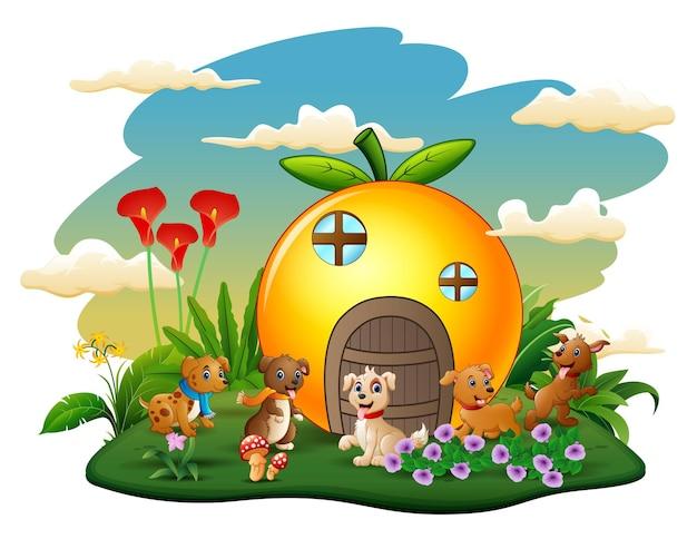 Orange haus mit fünf kaninchen cartoon-stil