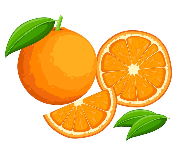 Orange mit ganzen blättern und orangenscheiben. illustration von orangen. illustration für dekoratives plakat, emblem-naturprodukt, bauernmarkt.