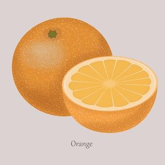 Orange schneidet reife frucht auf einem grau.