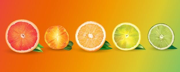 Orange, zitrone, zitrusfrucht, mandarine, pampelmuse und kalk