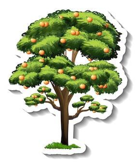 Orangenbaum-aufkleber auf weißem hintergrund