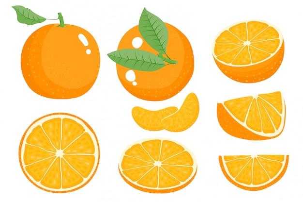 Orangenfrucht mit blatt und scheibe. vektor-illustration