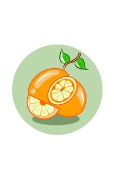 Orangenfrucht-vektorillustration