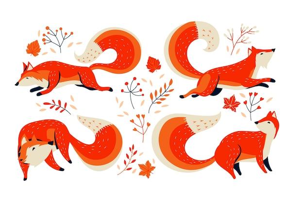 Orangenfuchs-sammlung mit herbstblume