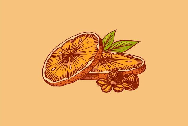 Orangenscheiben. gravierte handgezeichnete vintage-skizze.