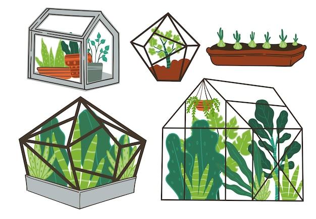 Orangerie voller blumen und tropischer pflanzen, laub und wachstum von exotischem zierblatt. flora im gewächshaus, landwirtschaft oder saisonale vegetation auf dem bauernhof. bio-garten. vektor im flachen stil