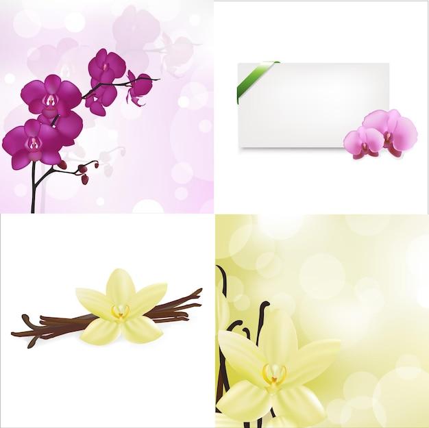 Orchideen, vanille-set und leere geschenkanhänger mit grünem satinband