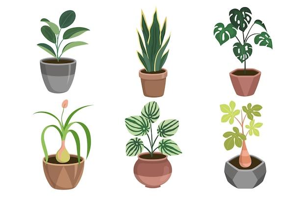 Organic flat design zimmerpflanzensammlung