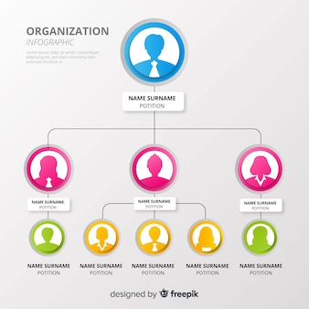 Organisationsdiagramm
