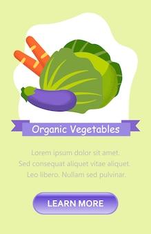 Organisches gemüse. website-werbebild.