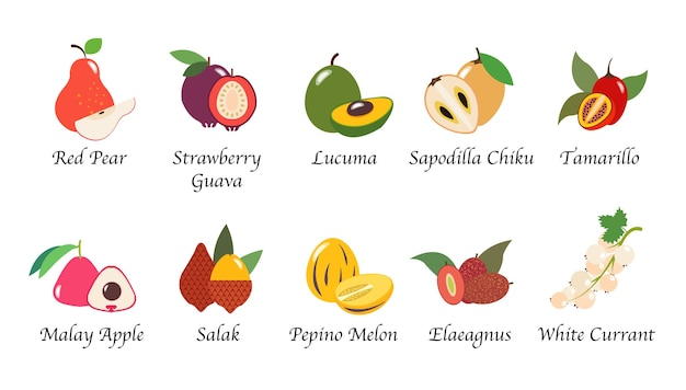 Organisierte naturgesundheitsfrucht isolierte sammlung
