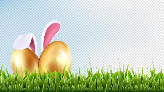 Osterwand. frühlingsillustration, jahreszeitdekoration. realistisches isoliertes grünes gras und goldene eier. frühlingsgarten oder wiese. hasenohren. illustriertes verstecktes kaninchen für eier im gras