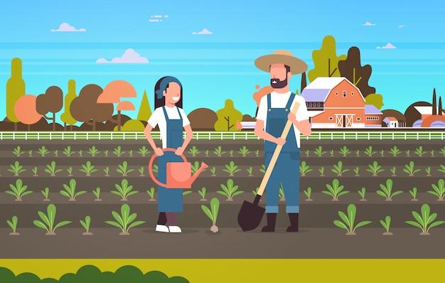 Paar bauern pflanzen setzlinge pflanzen gemüse mann frau gärtner mit schaufel und gießkanne landarbeiter öko landwirtschaft konzept ackerland landschaft landschaft horizontal