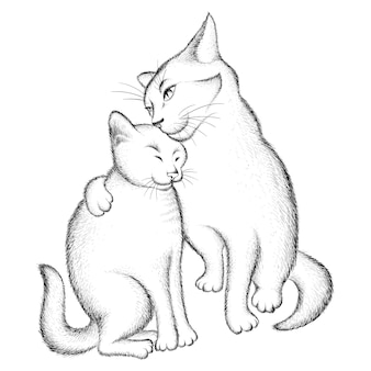 Paar liebhaber von katzen.