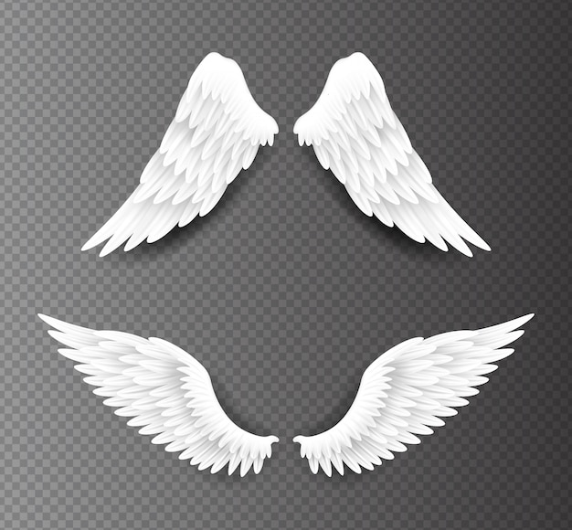 Paar schöne weiße engelsflügel lokalisiert auf transparentem hintergrund, realistische 3d-illustration. spiritualität und freiheit