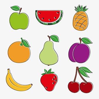 Packung handgezeichnete köstliche früchte