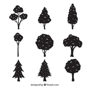 Packung mit bäumen mit silhouette