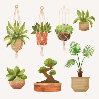 Packung mit bemalten aquarell-zimmerpflanzen