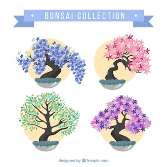 Packung mit bunten bonsais