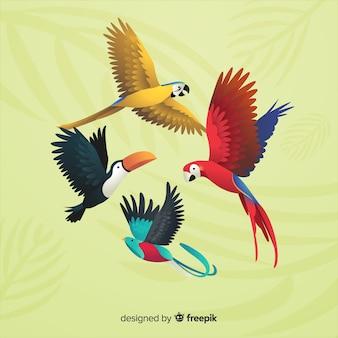 Packung mit exotischen vögeln realistischen stil
